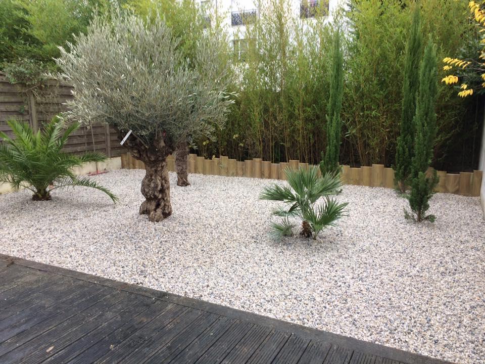Création d'aménagement paysager avec graviers et arbres réalisé par Kell Jardin à Orée d'Anjou